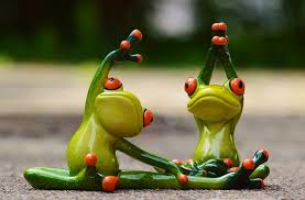 frog partners stretching image